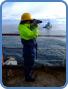 Marine-Mammal-Observer-