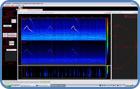 Passive-Acoustic-Monitoring